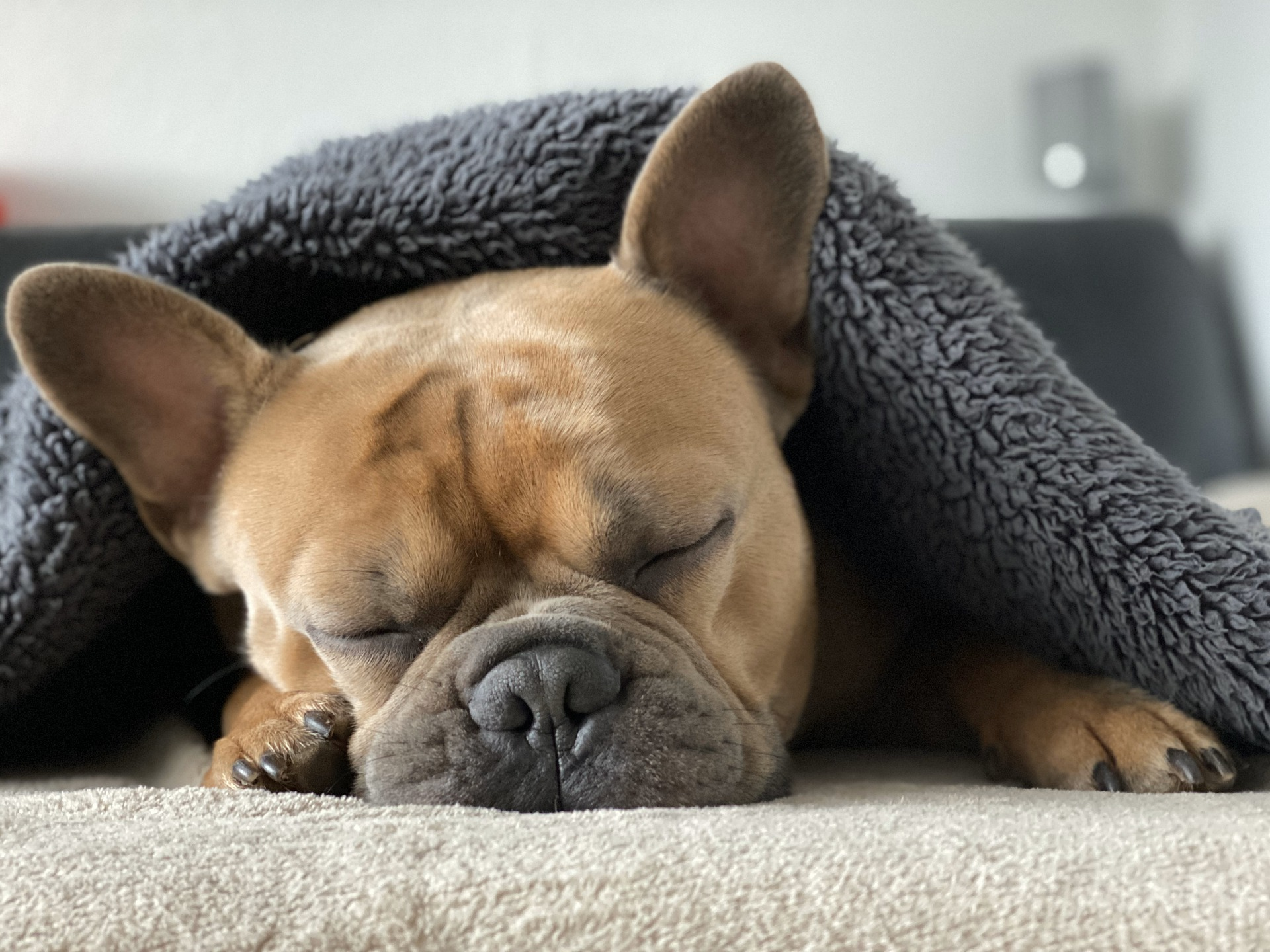自由な時間が増える短眠法